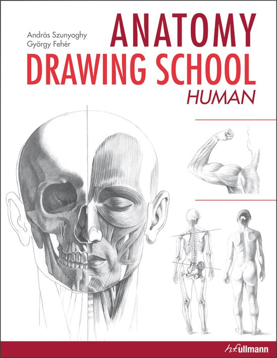 Anatomy Drawing School Human Body Buy Book Online Ullmann Medien
