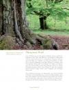 Leseprobe Unser Wald