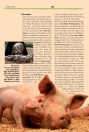 Bio, Bioprodukte, Lebensmittel, Lexikon, Fakten