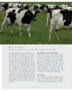 Leseprobe Das Kuhbuch