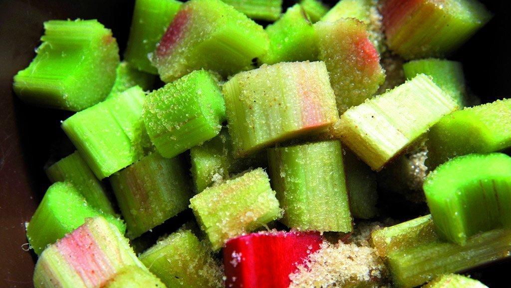 Ob als Kuchen, Konfitüre oder Dessert - Rhabarber lässt sich in vielen Variationen genießen.