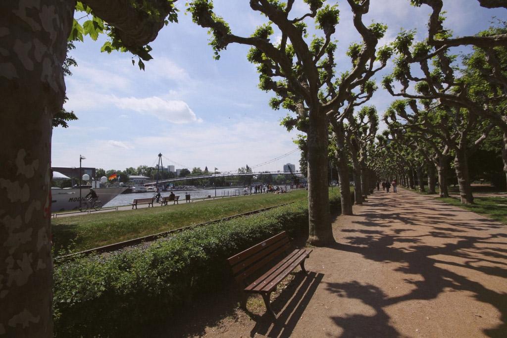 Gehört zu den schönsten Sehenswürdigkeiten der Stadt: das Museumsufer (Foto: © ais3n, Flickr)