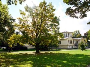 Der Hofgarten mit dem Akademischen Kunstmuseum