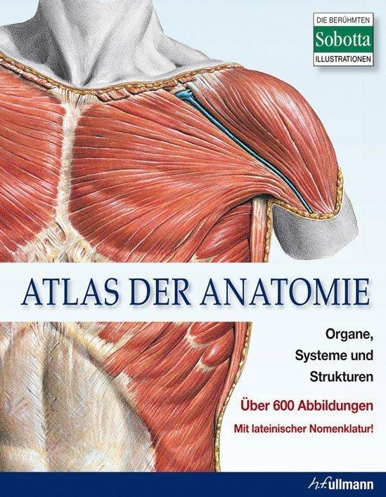 Atlas der Anatomie - Organe, Systeme und Strukturen