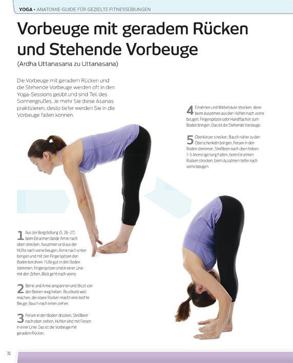 yoga anatomie guide effektive fitness bungen ullmann medien. Black Bedroom Furniture Sets. Home Design Ideas