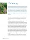 Leseprobe Balsam aus der Natur