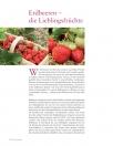 Leseprobe Beerenliebe