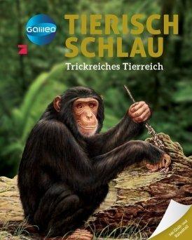 Galileo Wissen: Tierisch schlau