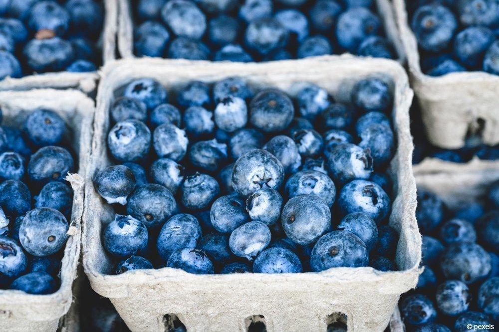 Süße Beeren zum Genießen: Kulturheidelbeeren vom Markt lassen sich wunderbar zum Kochen und Backen verwenden.