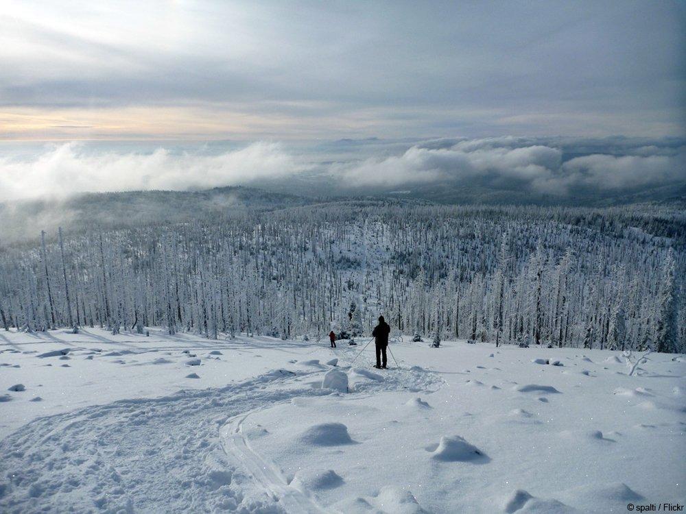 Entspannte Tage im Bayerischen Wald: Wandern im Winter-Paradies