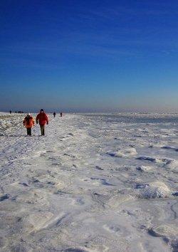 Wochenendtipp: Amrum im Winter