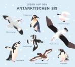 Ein Tag auf unserem blauen Planeten ... In der Antarktis