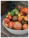 Buchinnenseite Tomaten - Meine Leidenschaft h.f.ullmann