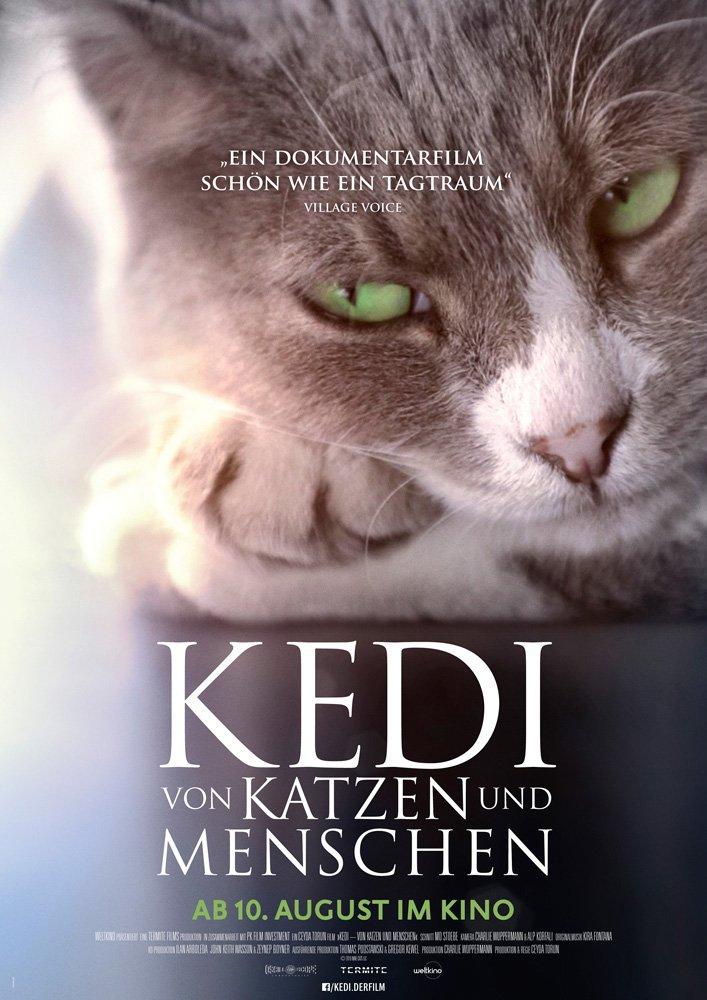 KEDI - Filmplakat
