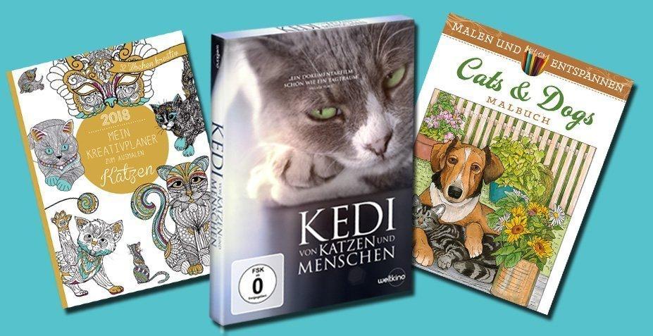 KEDI - Von Katzen und Menschen - Gewinnspiel