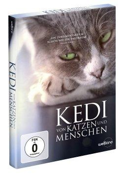 KEDI - Von Katzen und Menschen, ab 15. Dezember 2017 als DVD und Blu-ray erhältlich